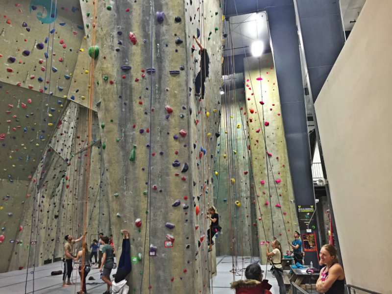 A climber NOT panicking at EVO ROCK + FITNESS in Portland. Shannon Bryan photo