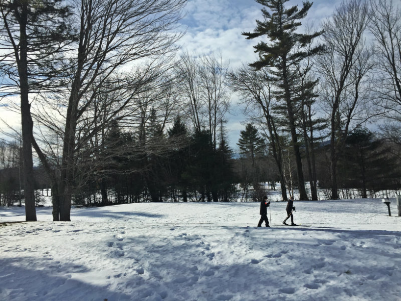 Skiers on the trails at the Nordic Ski Center in Bethel. Shannon Bryan photo