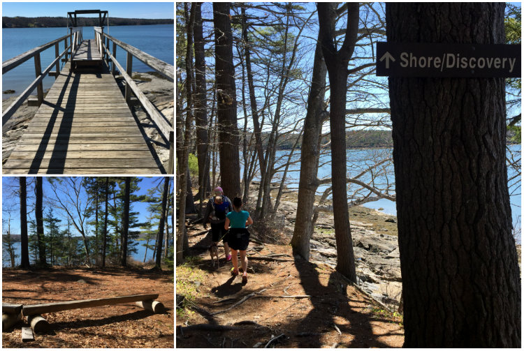 Take the turn to the Shore Trail. You will not regret it. Shannon Bryan photo