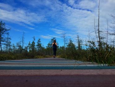 sacoheath_boardwalkrunning_650