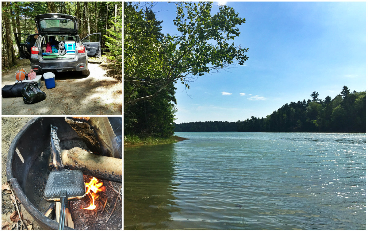 Cobscook Bay State park campsite