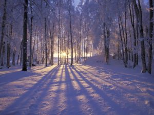 Winter Solstice Candlelight Class with David and Skye @ Lila East End Yoga | Portland | Maine | United States
