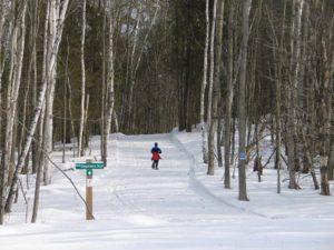 Snowshoe Walk at Shepards Farm @ Shepards Farm | Norway | Maine | United States