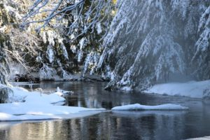 Snowshoeing with Heather @ Cathance River Preserve | Topsham | Maine | United States