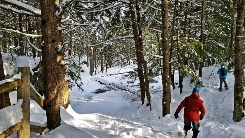 Snowshoe cathance river preserve topsham