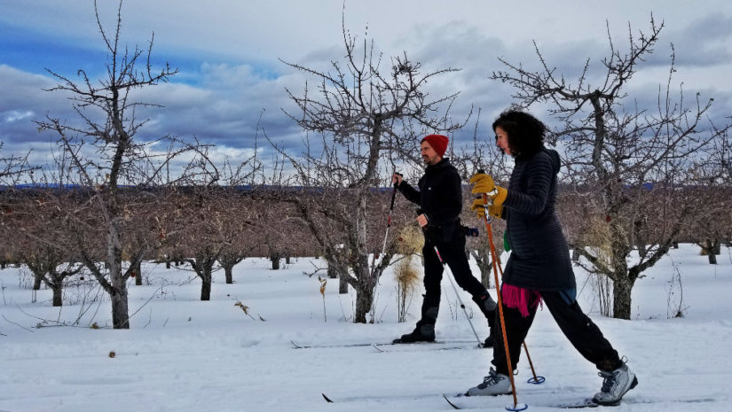 Cross-country skiing at Five Fields Farm in Bridgton