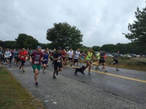 Dash for Dogs 5k @ Greater Androscoggin Humane Society | Lewiston | Maine | United States