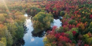 Fall Paddle in the Morning @ Hirundo Wildlife Refuge   Old Town   Maine   United States