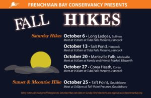 Fall hikes @ Frenchman Bay Conservancy - Corea Heath | Gouldsboro | Maine | United States