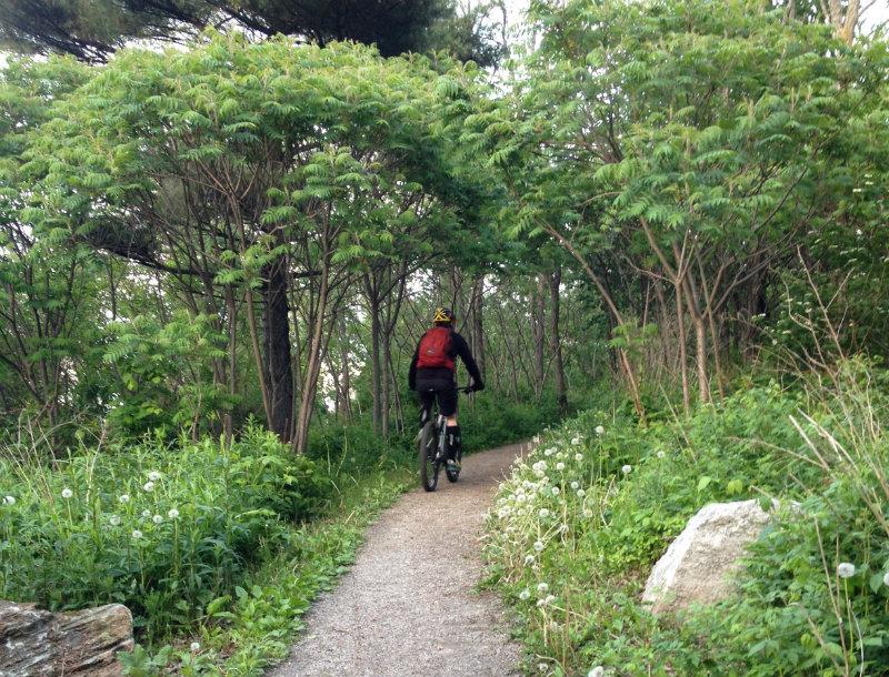 mountainbiking_trail
