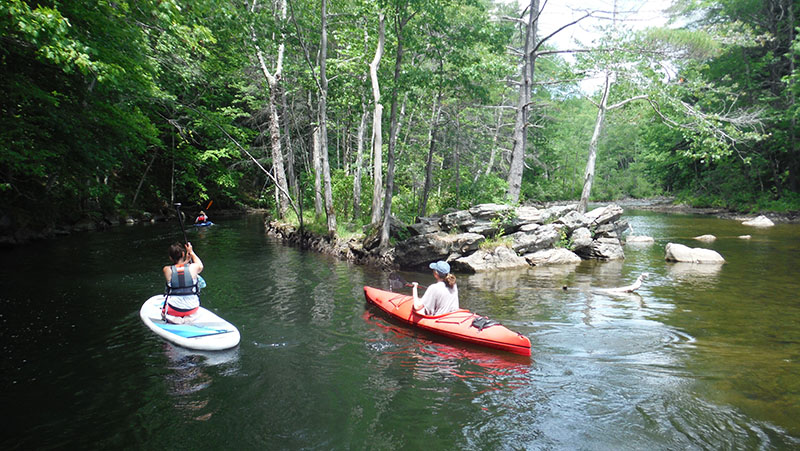 Paddling toward the dam on the Pleasant River. Shannon Bryan photo