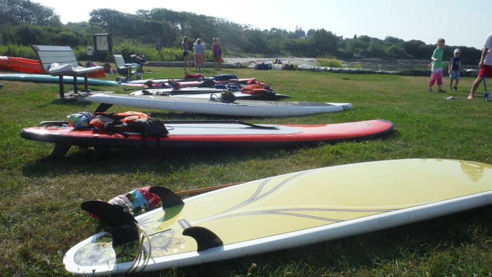 Paddleboards lie in wait. They're so excited for class! Shannon Bryan photo