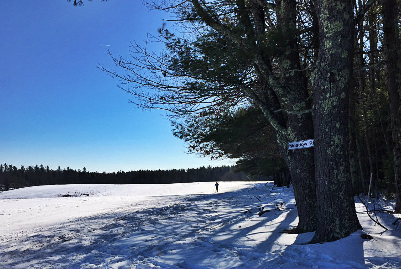 A cross-country skier on the trails at Harris Farm in Dayton. Shannon Bryan photo
