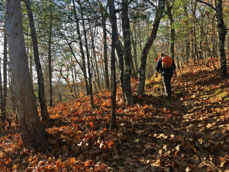 Ledges Trail, Pleasant Mountain Bridgton Maine
