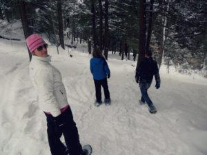 First Day Hike at Bradbury Mountain @ Bradbury Mountain State Park | Pownal | Maine | United States