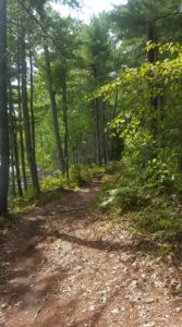 Spring Trail Running Series @ Hidden Valley Nature Center | Jefferson | Maine | United States
