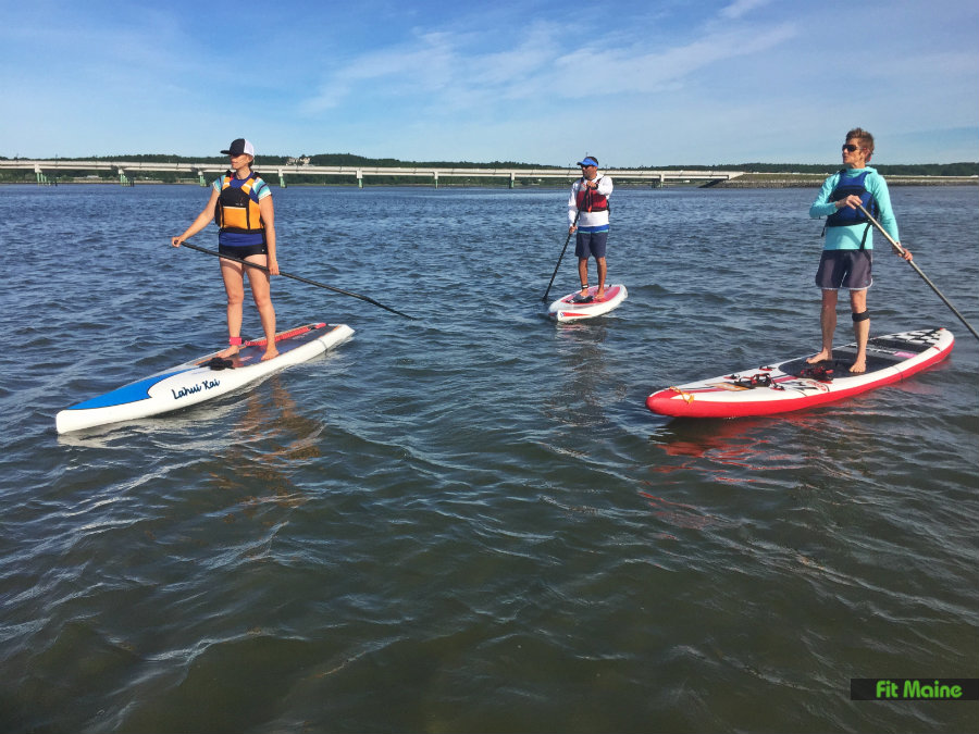 Paddleboarders on the water