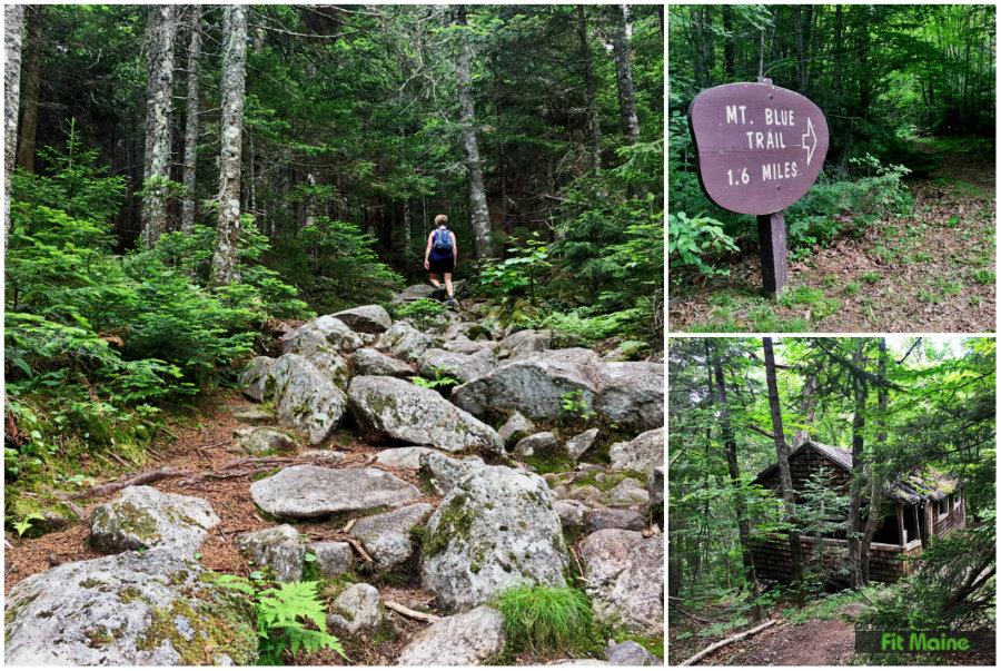 Mt Blue hiking