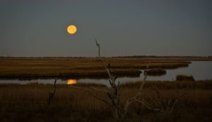Full Moon Walk @ The Eastern Trail | Kennebunk | Maine | United States