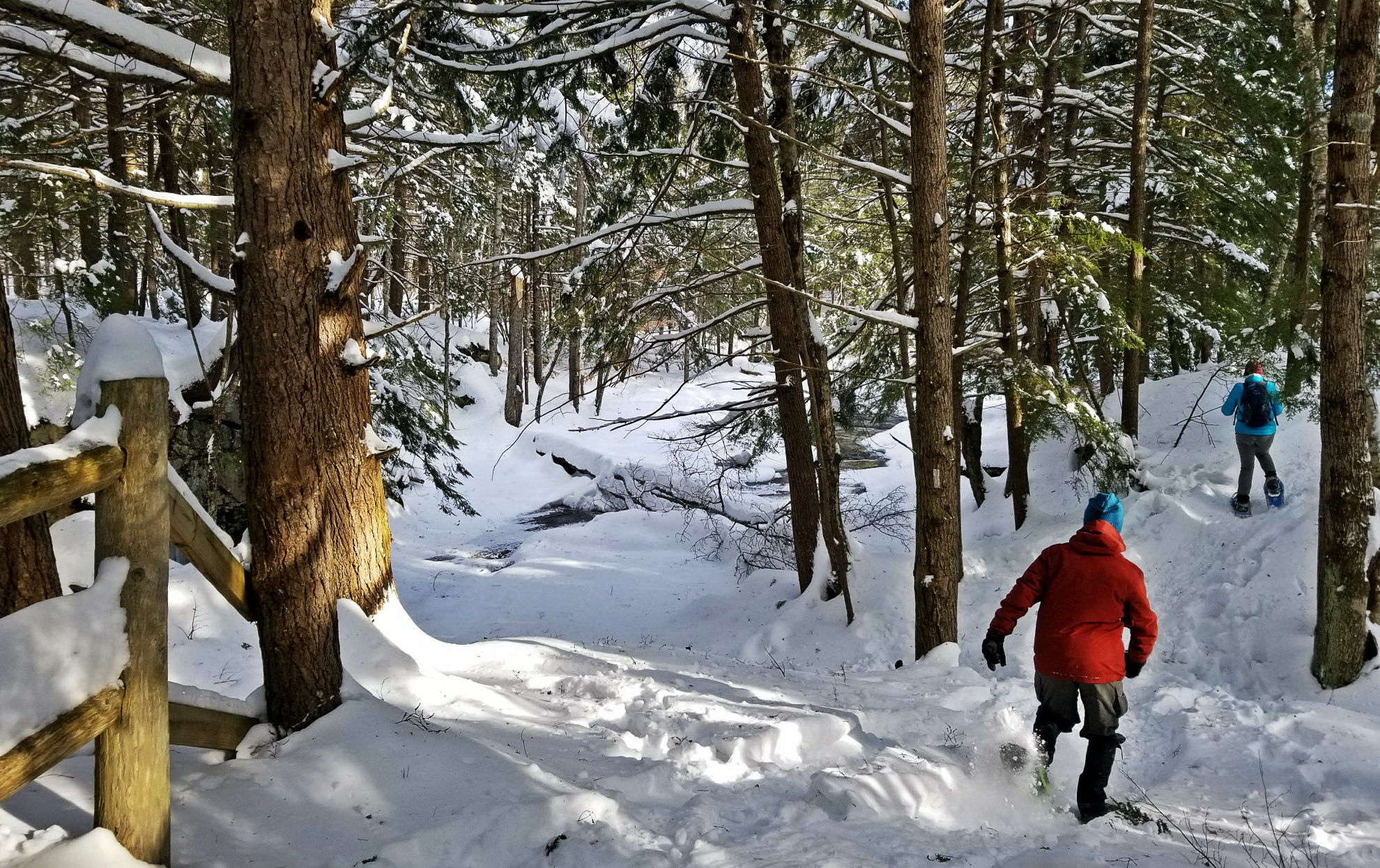 Splendid snowshoe at Cathance River Preserve in Topsham (beer at Flight Deck after)!