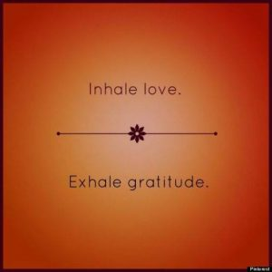 Thanksgiving Gratitude Flow @ Big White Barn Yoga | Readfield | Maine | United States