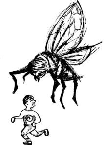 The Running of the Black Flies 5k @ The Pour Farm Brewery