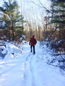 Moonlight Snowshoe @ Yankee Woodlot Trail