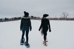 Open Snowshoe around the orchards @ pin Vista of Maine Tasting Room - Vineyard, Orchard & Cidery