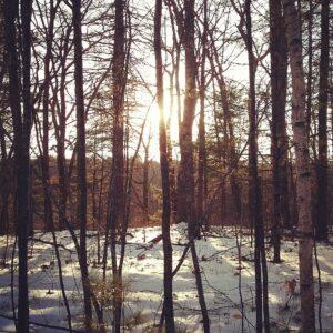 Snow Stroll @ Mousam River Wildlife