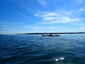 Paddle Maine Mondays @ Maine Coast |  |  |