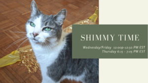 Shimmy Time via Zoom - Every Wed/Fri at 12:00 PM EST, Thu at 6:15 PM EST @ Online |  |  |